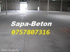 0757807316-Sapa Mecanizata-Elicopterizata