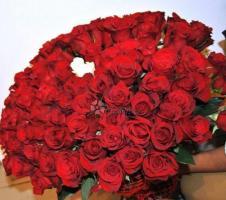 Fire de trandafiri la super preturi !!!