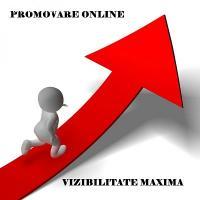 Publicitate si promovare online