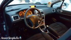 Peugeot 307 An 2008
