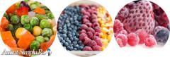 Legume si Fructe congelate en-gros