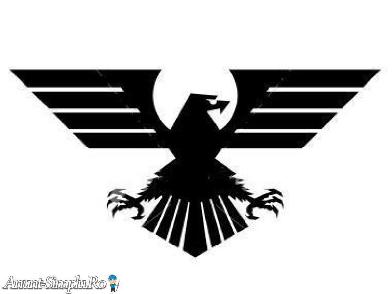 AGENTIA  DE  DETECTIVI  EAGLE  ORADEA - ARAD