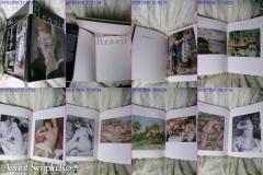 Renoir album de arta rar