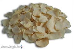 Usturoi granule - pudra - fulgi vrac