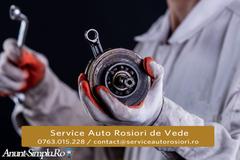 Service Auto Rosiori de Vede.